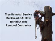 tree-removal-service-buckhead-ga-how-to-hire-a-tree-removal-contractor