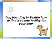 Dog boarding in Seattle how to find a quality facility for your dog
