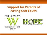 The Wellesley Parent Support Group
