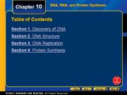 Chapter 10 DNA and Protein Synthesis