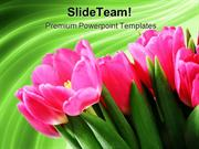Tulips_on_Green_Abstract_Beauty_PowerPoint_Templates_And_PowerPoint_Ba