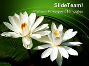 Water_Lilies_Nature_PowerPoint_Templates_And_PowerPoint_Backgrounds_pp