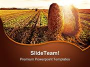 Wheat_Field_Agriculture_PowerPoint_Themes_And_PowerPoint_Slides_ppt_de