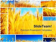 Wheat_Field_Collage_Food_PowerPoint_Templates_And_PowerPoint_Backgroun