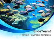 Fishes Inside Sea Animals PowerPoint Templates And PowerPoint Backgrou