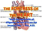 THE FORTRESS OF THE HEART