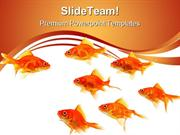 Goldfish Leader Leadership PowerPoint Templates And PowerPoint Backgro