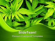 Green Leaves Nature PowerPoint Templates And PowerPoint Backgrounds pg