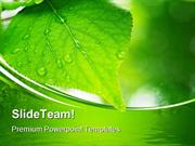 Green Leaves Nature PowerPoint Templates And PowerPoint Backgrounds pp