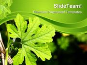 Green Plant Nature PowerPoint Themes And PowerPoint Slides ppt layouts