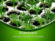 Green Plants Nature PowerPoint Templates And PowerPoint Backgrounds pg