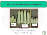 Lect Hybrid Seed Prod
