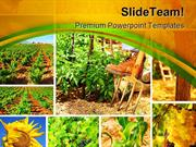 Harvest Concept Collage Agriculture PowerPoint Templates And PowerPoin