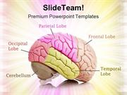Human Brain01 Medical PowerPoint Templates And PowerPoint Backgrounds