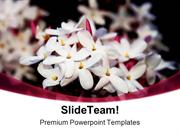 Jasmine Nature PowerPoint Templates And PowerPoint Backgrounds ppt the