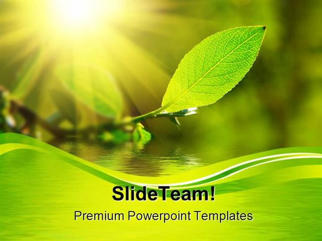 Leaf Sun Water Nature Powerpoint Themes And Powerpoint