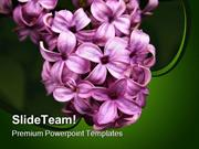 Lilacs Nature PowerPoint Templates And PowerPoint Backgrounds ppt them
