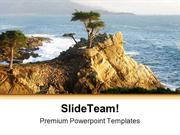 Lone Cypress Monterey Beach PowerPoint Themes And PowerPoint Slides pp
