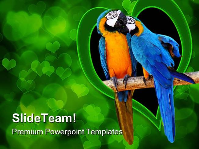 love birds animals powerpoint templates and powerpoint backgrounds, Modern powerpoint