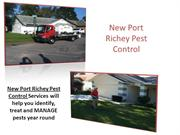 New Port Richey Pest Control