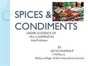 SPICES N CONDIMENTS