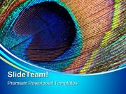 Peacock Feather Abstract PowerPoint Themes And PowerPoint Slides ppt l