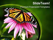 Pink Flower And Butterfly Animals PowerPoint Templates And PowerPoint