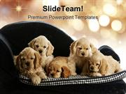 Puppies Animals PowerPoint Templates And PowerPoint Backgrounds ppt la