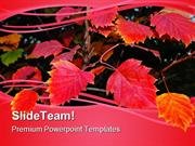 Red Autumn Leaves Nature PowerPoint Templates And PowerPoint Backgroun