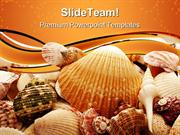 Seashell Background PowerPoint Templates And PowerPoint Backgrounds pp