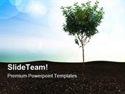 Small Tree With Blue Sky Nature PowerPoint Templates And PowerPoint Ba
