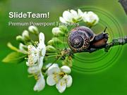 Snail Nature PowerPoint Templates And PowerPoint Backgrounds ppt layou