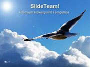 Soaring Through The Clouds Animals PowerPoint Templates And PowerPoint