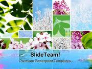 Springtime Flowers Nature PowerPoint Templates And PowerPoint Backgrou