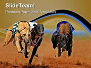 Sprinting Greyhounds Animals PowerPoint Templates And PowerPoint Backg
