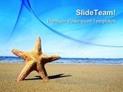 Starfish On The Beach Nature PowerPoint Templates And PowerPoint Backg