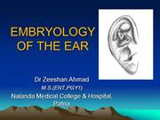embryology of ear8