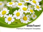 Summer Time Daisies Nature PowerPoint Templates And PowerPoint Backgro