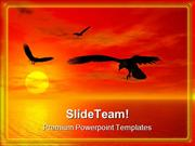 Sunset Nature PowerPoint Templates And PowerPoint Backgrounds 0211