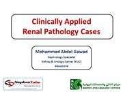 Clinically Applied Renal Pathology Cases