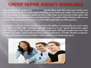 Credit repair agency Guidelines