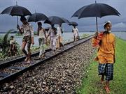 Photographer Steve McCurry Galleries Right as Rain