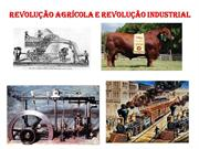Revoluo Agrcola e a Revoluo Industrial