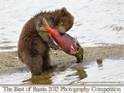 The Best of Russia 2012 Photography Competition