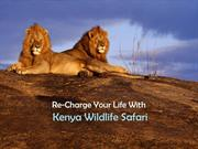 Re-Charge Your Life With Kenya Wildlife Safari