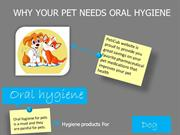 why your pet needs oral hygiene