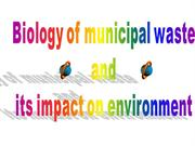 Impact of Solid waste on the environment