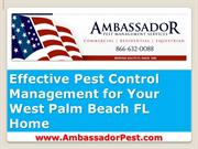 Effective Pest Control West Palm Beach Tips