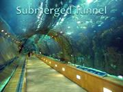Submerged Tunnel