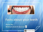 Facts about teeth